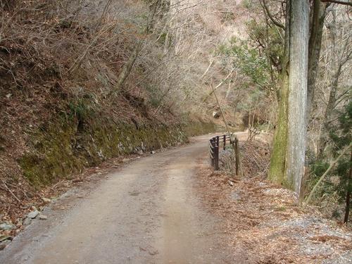 天城峠の旧道